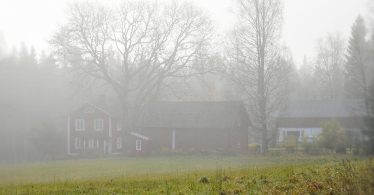 höstlandskap bredsjöbäcken blogg 141026