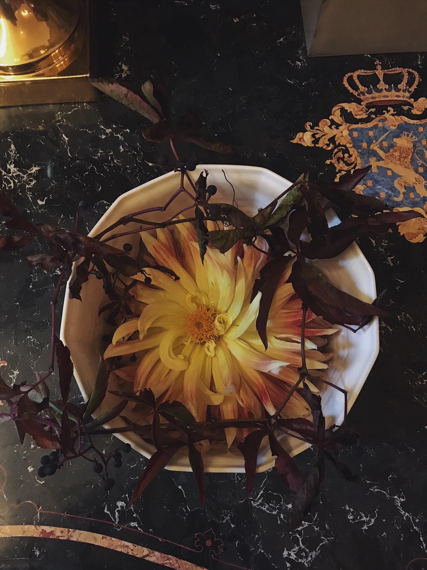 Blommor i konsten pa nationalmuseum
