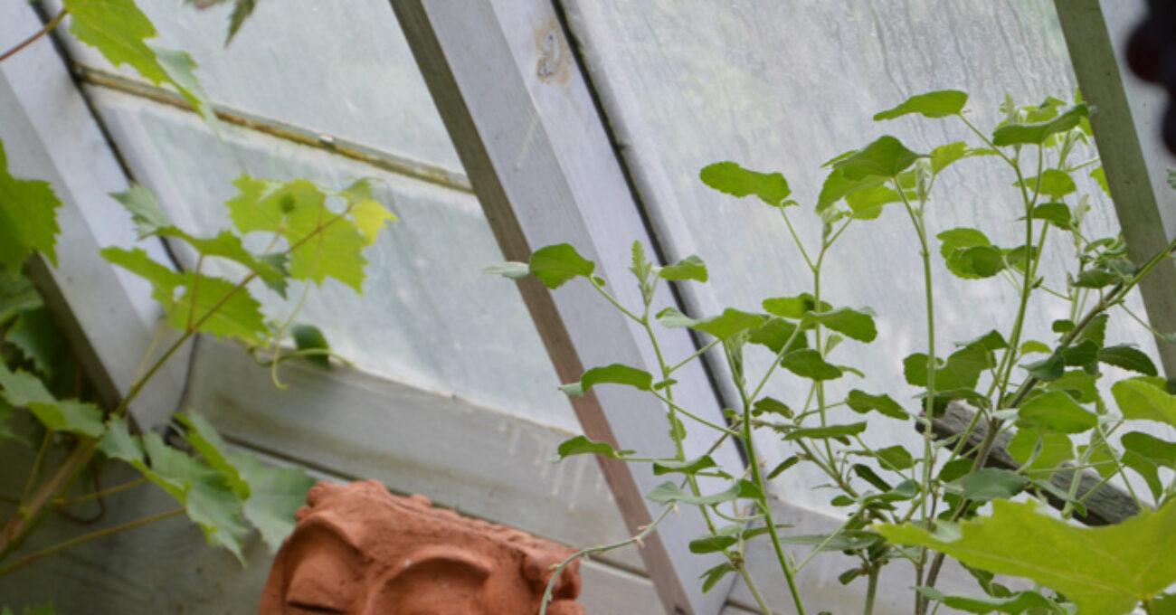 keramik växthus blogg 130922