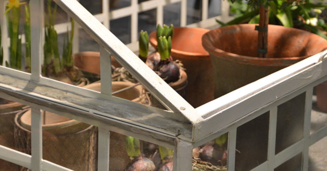 farming växthus blogg 130122
