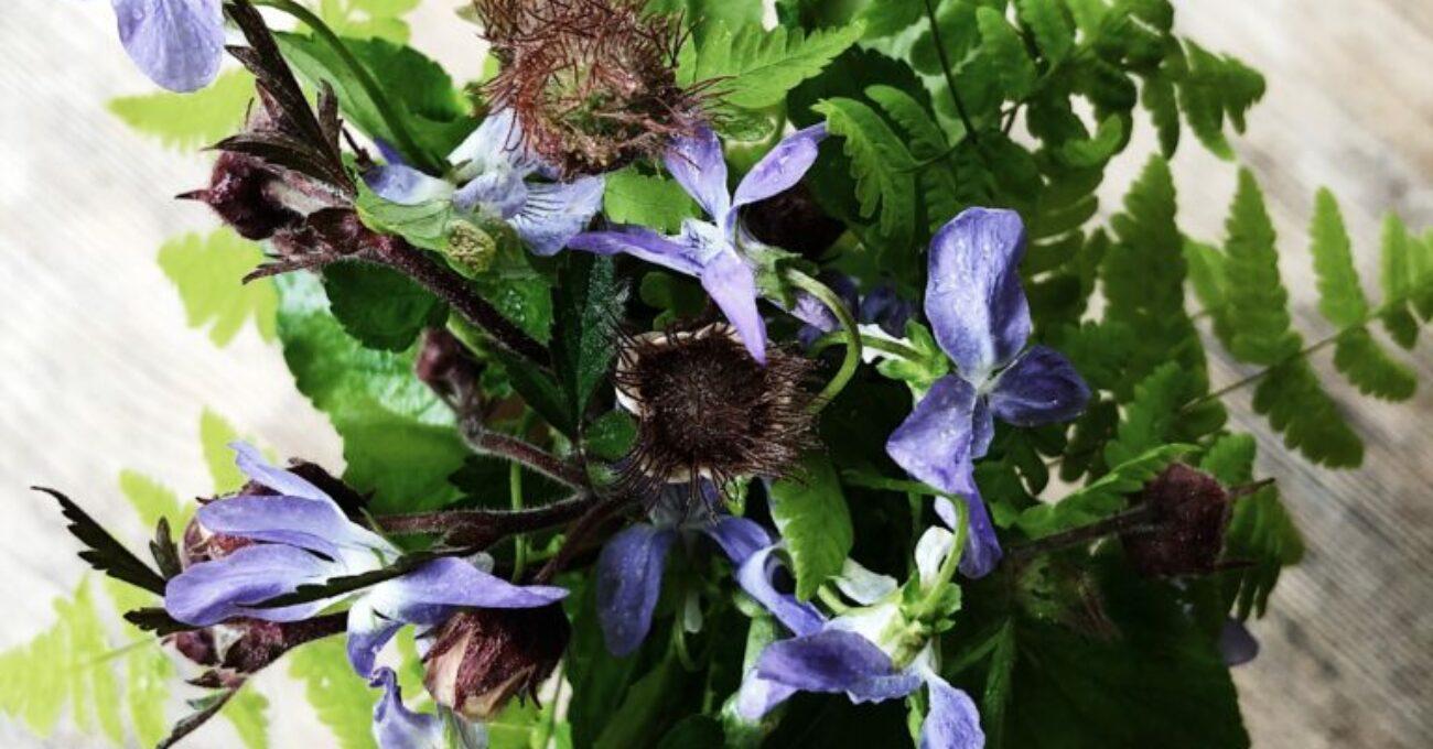 Trädgårdsbuketten juni
