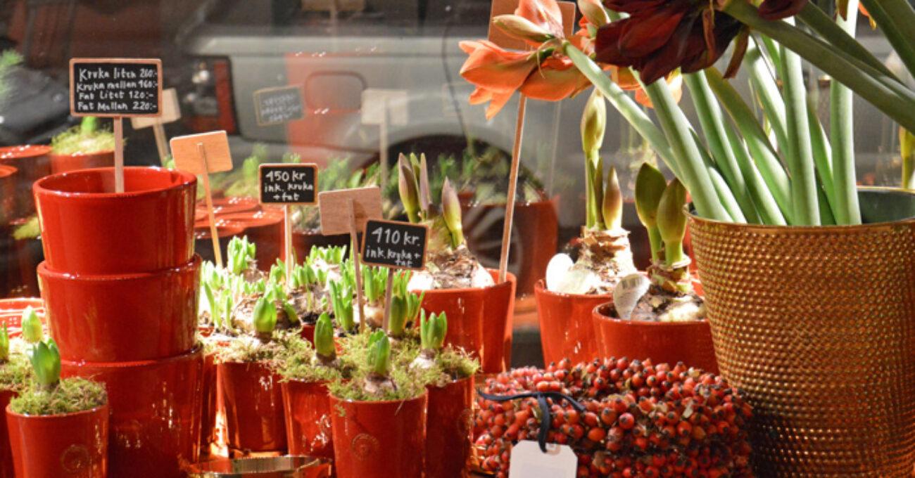 blommor svenskt tenn blogg 131116