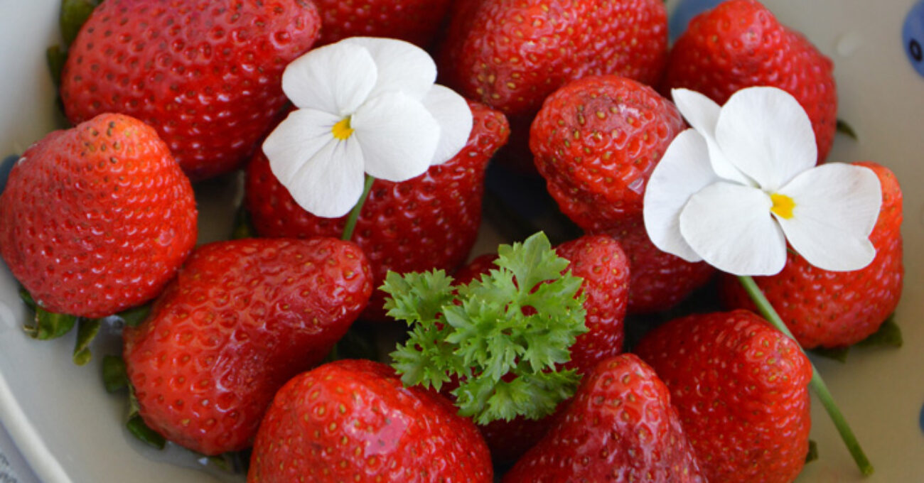jordgubbar närbild blogg 130505