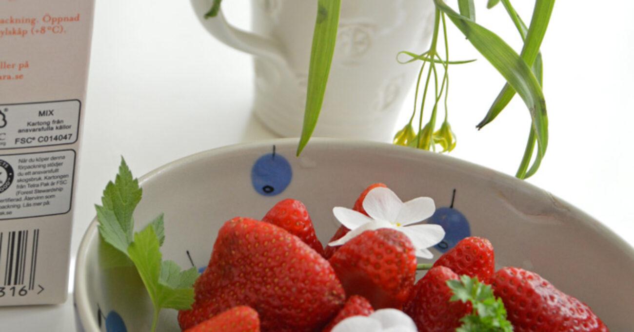 jordgubbar blogg 130505